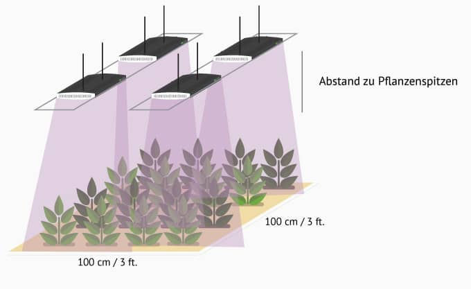 Abstand 4 fSpectrum LED
